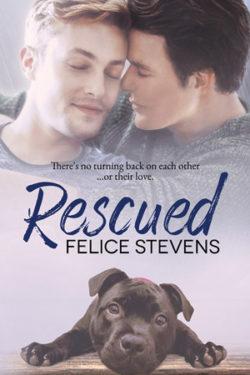 Rescued by Felice Stevens