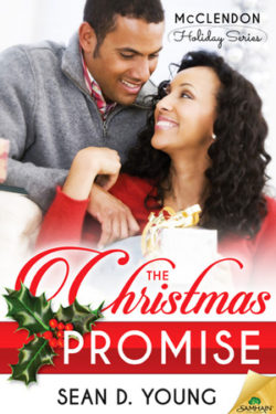 The Christmas Promise by Sean D. Young