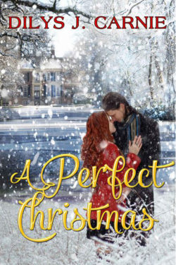 A Perfect Christmas by Dilys J. Carnie