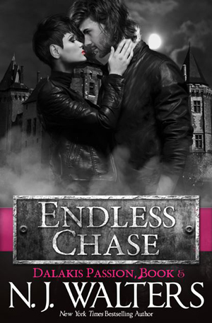 Endless Chase by NJ Walters