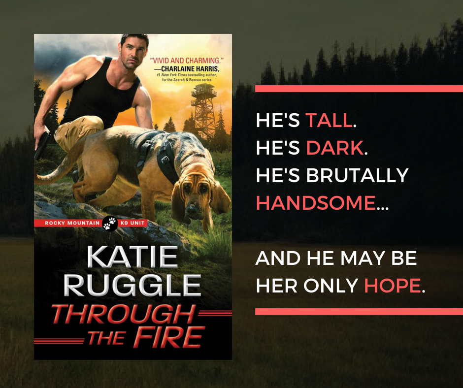 Through the Fire by Katie Ruggle
