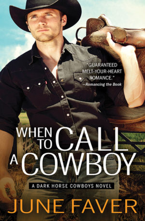 When to Call a Cowboy by June Faver