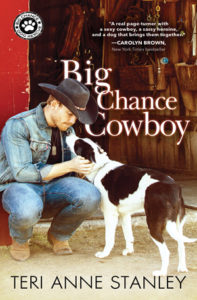 Big Chance Cowboy by Teri Anne Stanley