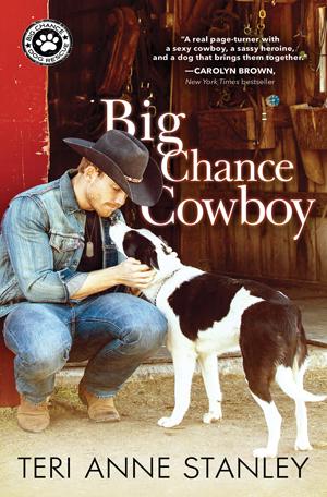 Big Chance Cowboy by Teri Anne Stanley