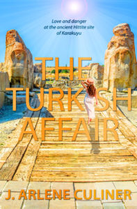 The Turkish Affair by J. Arlene Culiner