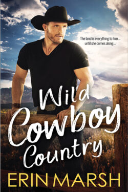 Wild Cowboy Country by Erin Marsh