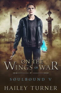 On the Wings of War by Hailey Turner