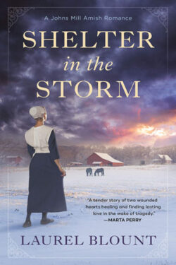 Shelter in the Storm by Laurel Blount