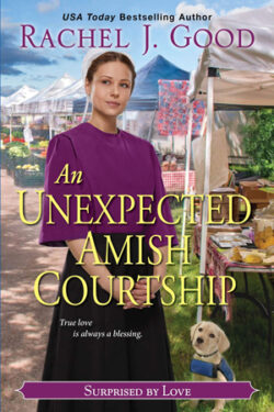 An Unexpected Amish Courtship by Rachel J. Good
